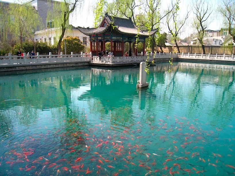 Manantial Zhenzhu. Jinan.