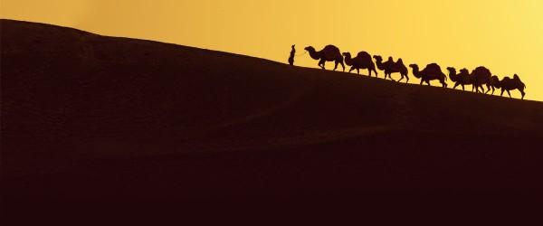 Ruta de la Seda