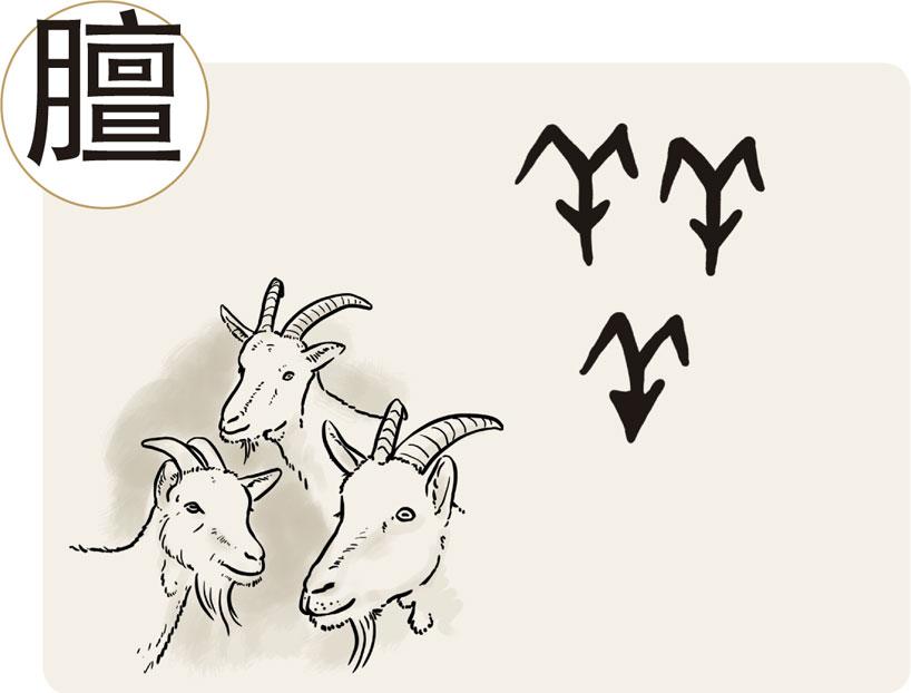 El carácter 膻 (shān). Principios de formación de los caracteres chinos