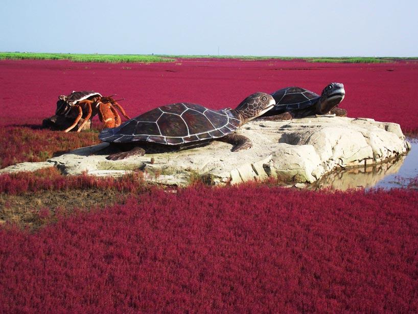 La Playa Roja (红海滩, Hóng hǎitān) de Panjin