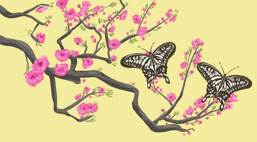 Amantes mariposa