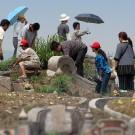 Ofrenda de flores durante la celebración del Qingming