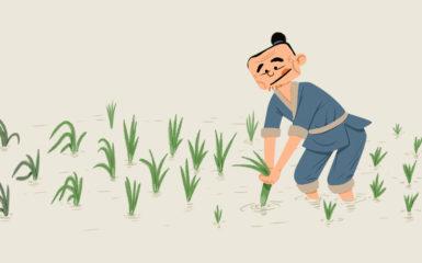 Tirar de las plantas frescas para ayudarlas a crecer.