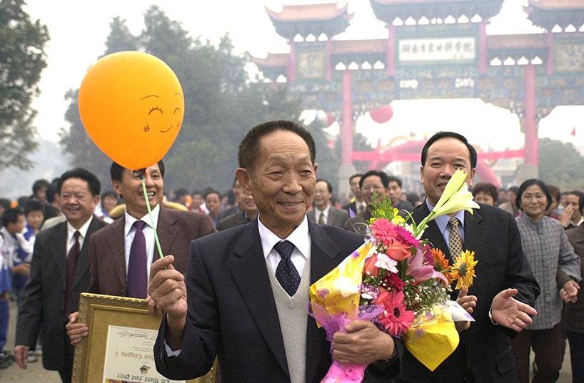 Yuan Longping en la recogida de un premio por su carrera.